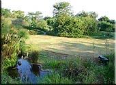 Butterfly garden Pond Butterfly farm Pietermaritzburg